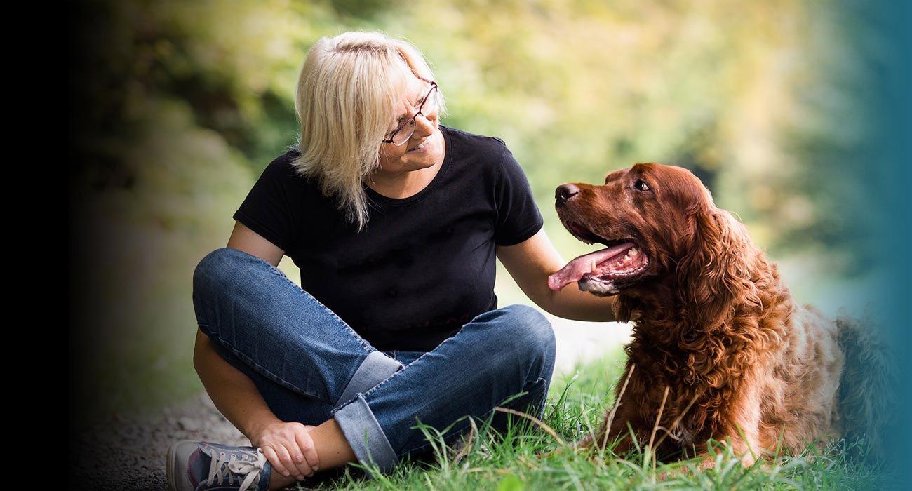 Institut für Hundeerziehungsberatung