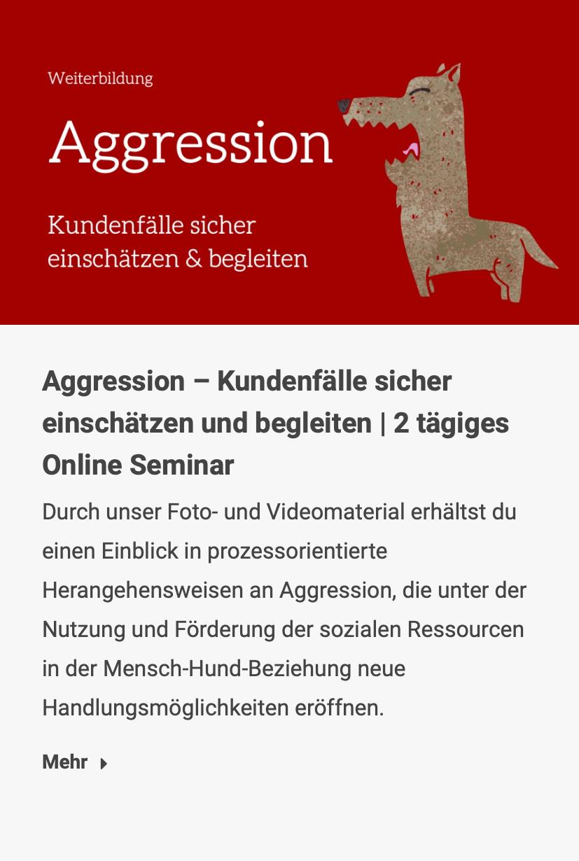 Aggression – Kundenfälle sicher einschätzen und begleiten