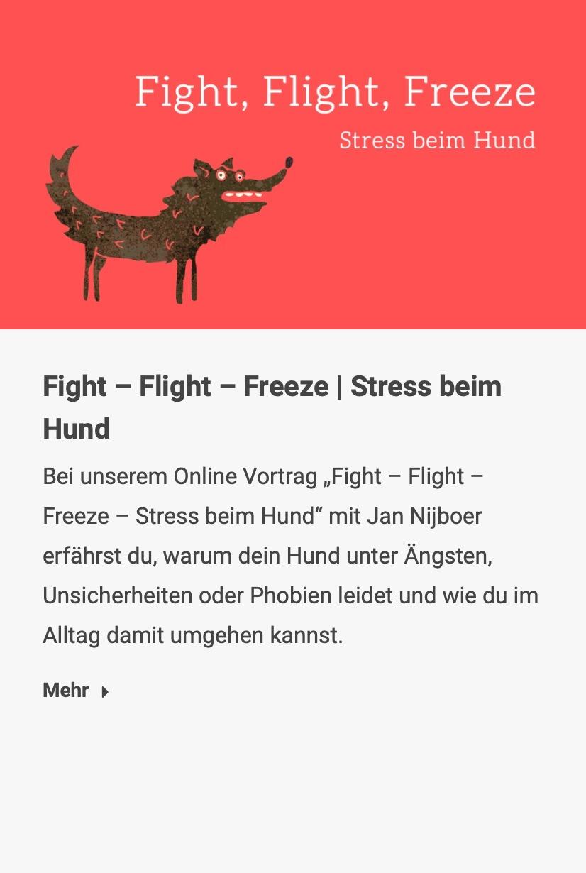 Fight – Flight – Freeze | Stress beim Hund